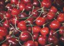 Íme a meggy termés- és piaci prognózis